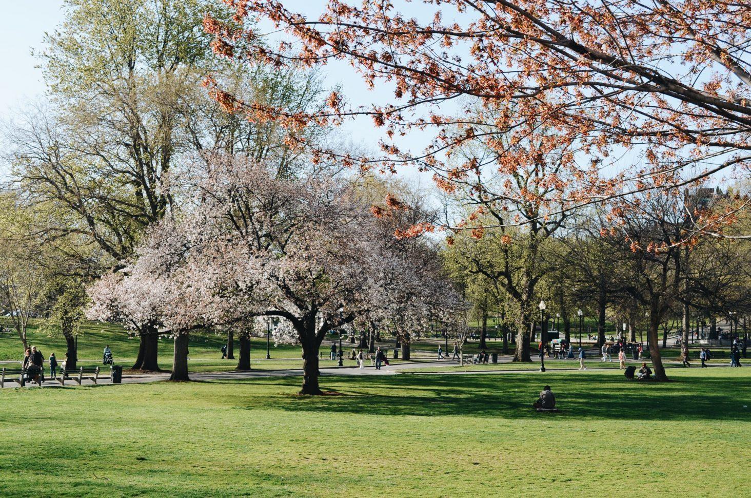 3 coisas que você não pode deixar de fazer em Boston